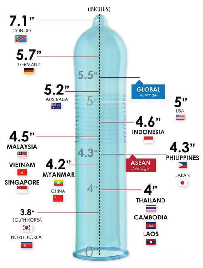 The penis size worldwide