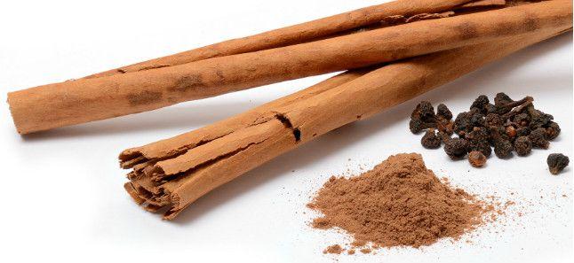 dalchini herb for tayurvedic reatment of diabetes