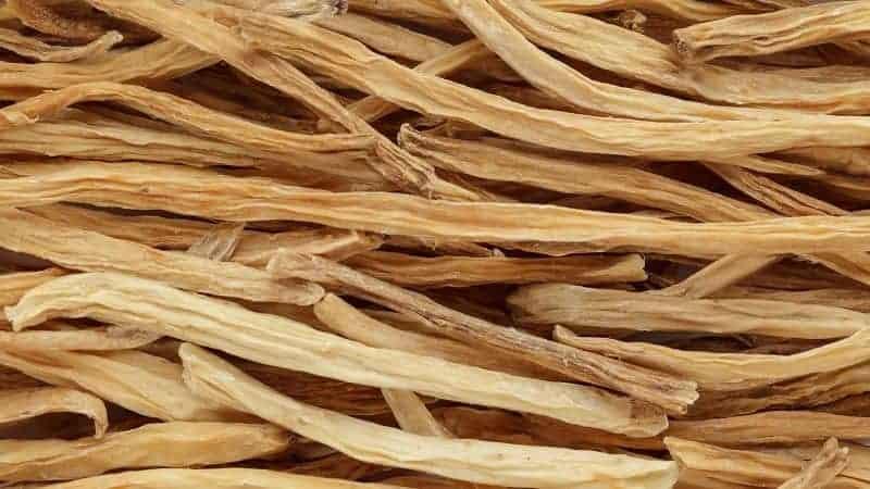 shatavari ayurvedic herb