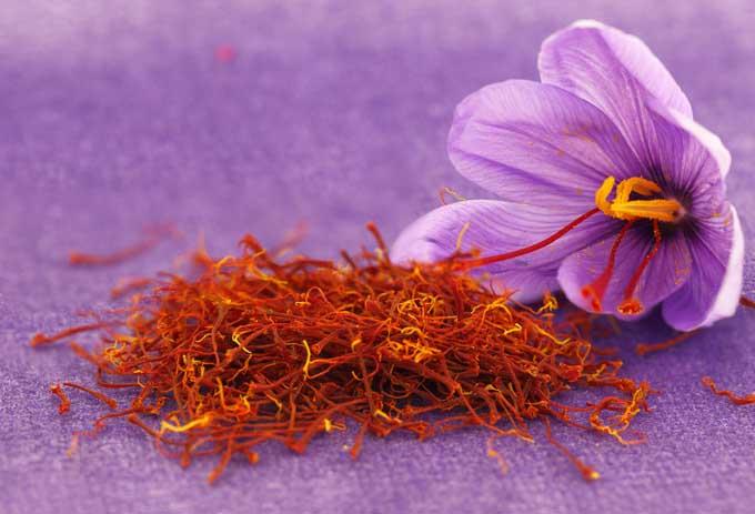 saffron is an ayurvedic medicine for sex stamina