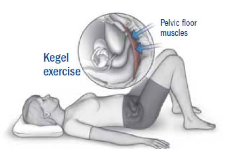kegel for sex stamina